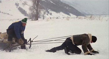 Sled Training: Effective Workout Or Fitness Fad? Part 2