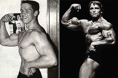 The Muscle Building Myth